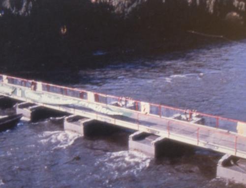 Architekturvisionen 1984